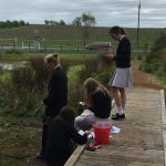 P6 SS Science smaller
